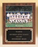 Plaque with Slide-in Photo or Certificate Holder Bowling Trophy Awards
