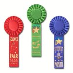 Scholastic Rosette Award Ribbon Football Trophy Awards