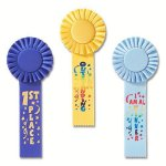 Fun Rosette Award Ribbon Gymnastics Trophy Awards