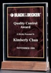 Acrylic Award with a Ruby Marble Center Marble Acrylic Awards